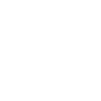 Private Lease Toyota